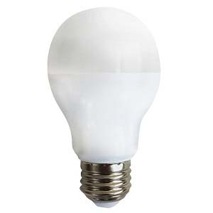 40W Equivalent Daylight (5000K) A19 LED Light Bulb, LB0101